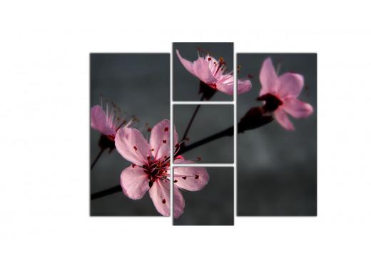 Розовые цветы на сером фоне