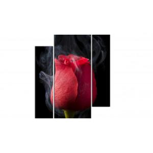 Дымная роза