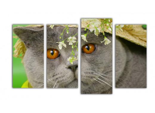 Кот Тома Сойера в соломенной шляпе