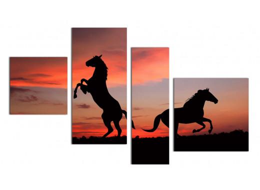 Грациозные лошади на закате